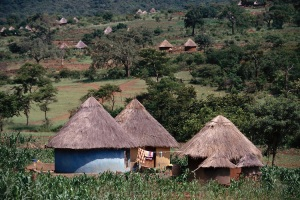 Typical round houses of the Transvaal